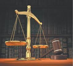 Представлением интересов в арбитражном суде должны заниматься специалисты