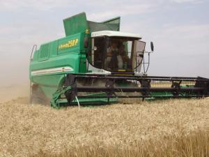 Зерноуборочные комбайны незаменимы при уборке зерна