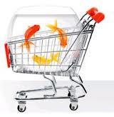 Делаем покупки в интернет - магазинах